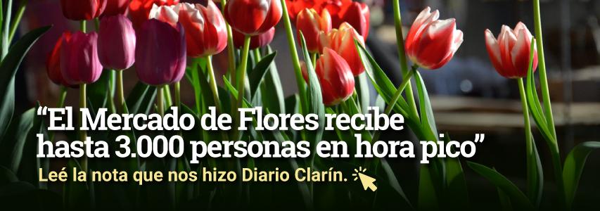 Nota-Clarin