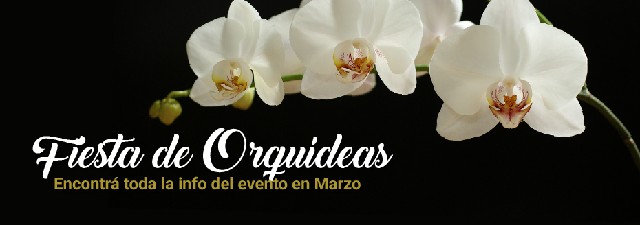 Fiesta-Orquideas