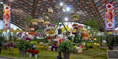 Fiesta de la Flor Escobar 2017